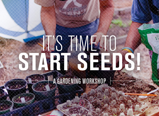 starting seed garden workshop in atlantic and jacksonville beach florida by dig local